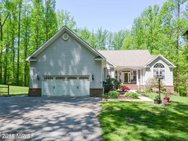 5600 Nutwell Sudley Road, Deale, MD 20751 (#AA10237441) :: Bob Lucido Team of Keller Williams Integrity