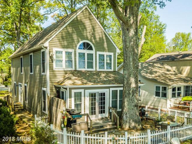 1024 Bay Front Avenue, North Beach, MD 20714 (#AA10239189) :: The Maryland Group of Long & Foster