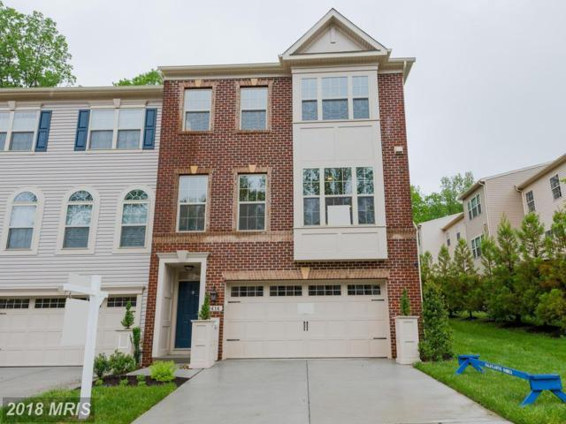 12 Macmullen Drive #2414, Gambrills, MD 21054 (#AA10242277) :: The Riffle Group of Keller Williams Select Realtors