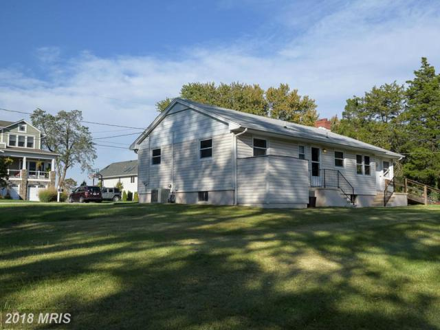 3665 Bay Drive, Edgewater, MD 21037 (#AA10243616) :: Bob Lucido Team of Keller Williams Integrity