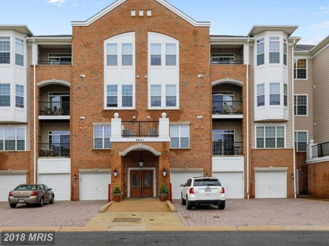 8621 Fluttering Leaf Trail #301, Odenton, MD 21113 (#AA10245541) :: Dart Homes