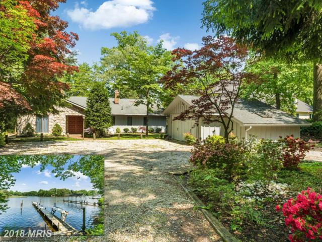 788 Holly Drive N, Annapolis, MD 21409 (#AA10251542) :: Bob Lucido Team of Keller Williams Integrity