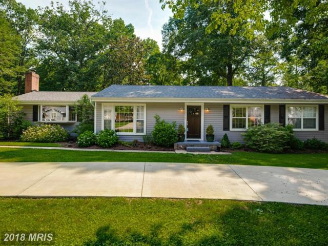 1017 Pinecrest Drive, Annapolis, MD 21403 (#AA10257695) :: The Gus Anthony Team