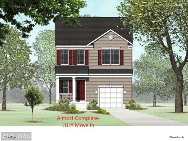 810 209TH Street, Pasadena, MD 21122 (#AA10259687) :: The Gus Anthony Team