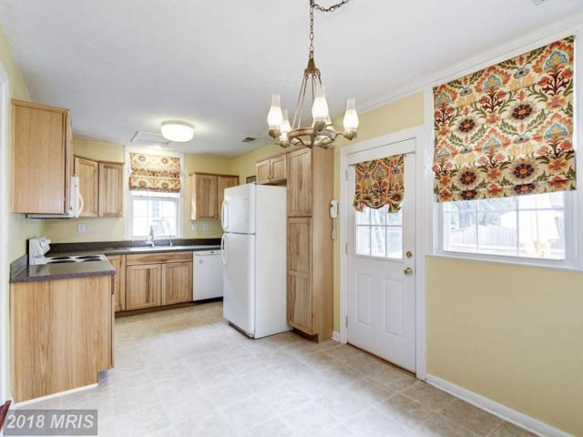 202 Lakeview Avenue, Edgewater, MD 21037 (#AA10287435) :: Maryland Residential Team