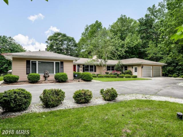 3906 W Shore Drive, Edgewater, MD 21037 (#AA10295354) :: Keller Williams Pat Hiban Real Estate Group