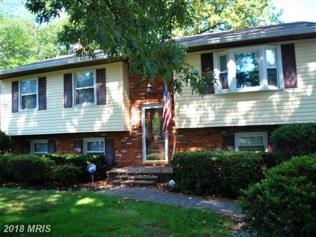 1185 Summit Drive, Annapolis, MD 21409 (#AA10300445) :: SURE Sales Group