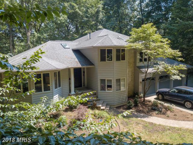 1761 Point No Point Drive, Annapolis, MD 21401 (#AA10301744) :: The Sebeck Team of RE/MAX Preferred