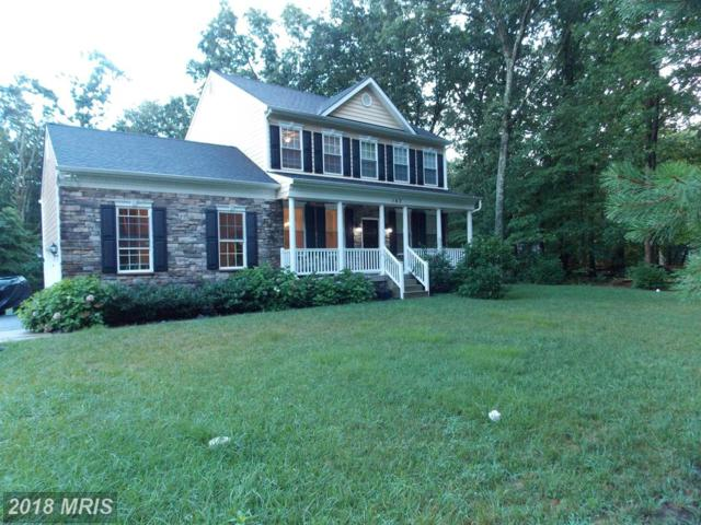 163 Lake Shore Drive, Pasadena, MD 21122 (#AA10306848) :: Eric Stewart Group
