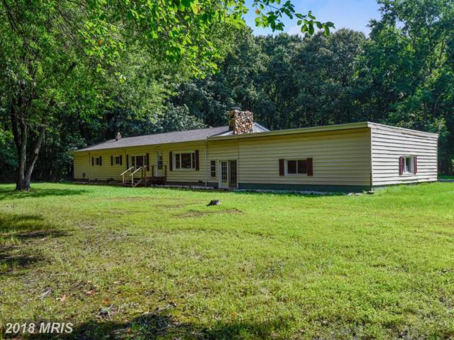 1170 Steamboat Road, Shady Side, MD 20764 (#AA10314986) :: Keller Williams Pat Hiban Real Estate Group