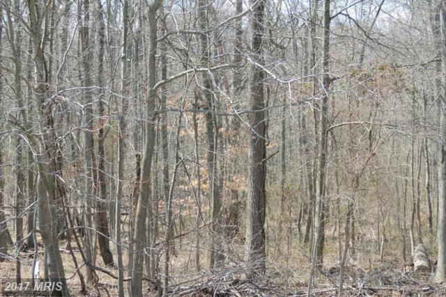 LOT 170 Calvert Street, Edgewater, MD 21037 (#AA8735022) :: Pearson Smith Realty