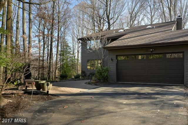 1707 Tree House Court, Annapolis, MD 21401 (#AA9838796) :: LoCoMusings