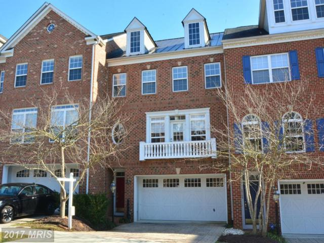 2707 Merlot Lane, Annapolis, MD 21401 (#AA9873497) :: Pearson Smith Realty