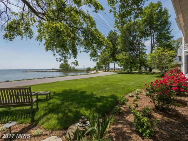 1268 Chesapeake Drive, Churchton, MD 20733 (#AA9876858) :: Pearson Smith Realty
