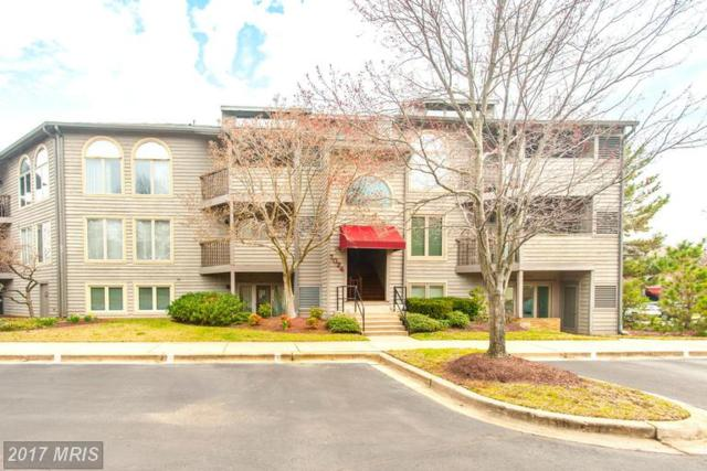 7024 Channel Village Court #202, Annapolis, MD 21403 (#AA9880651) :: LoCoMusings