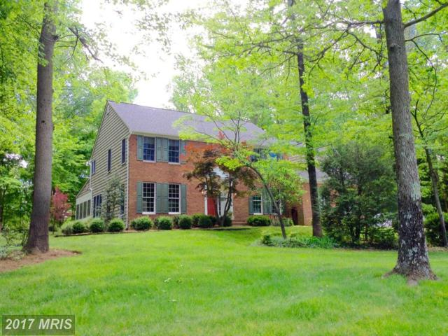 1009 Howard Grove Court, Davidsonville, MD 21035 (#AA9882365) :: Pearson Smith Realty