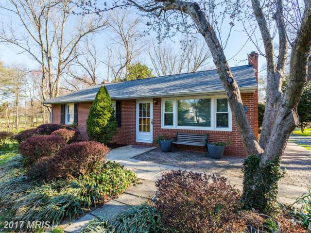 1734 Maple Avenue, Hanover, MD 21076 (#AA9902356) :: Pearson Smith Realty