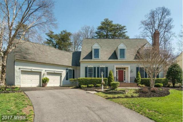 12 Harness Creek View Court, Annapolis, MD 21403 (#AA9911818) :: LoCoMusings
