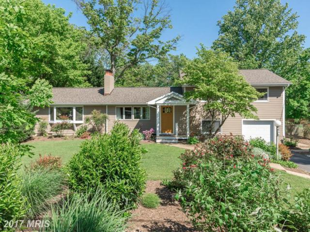503 Tulip Road, Annapolis, MD 21403 (#AA9912855) :: Pearson Smith Realty