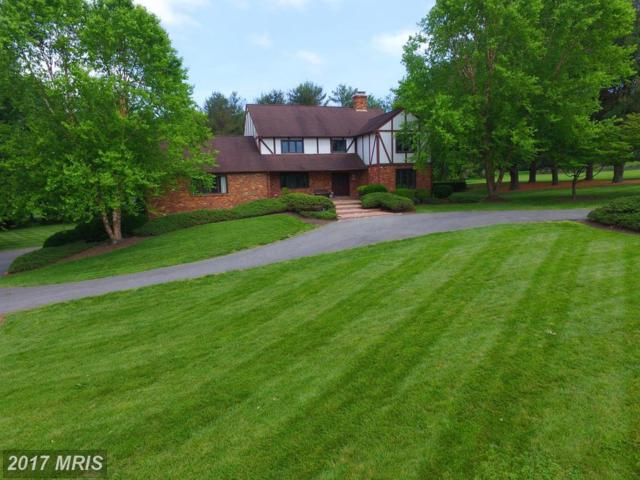 3297 Green Ash Road, Davidsonville, MD 21035 (#AA9953787) :: Pearson Smith Realty