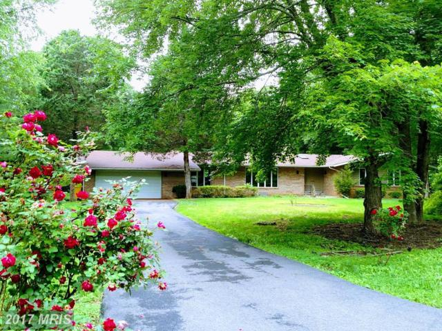 2544 Arbor Court, Davidsonville, MD 21035 (#AA9955453) :: LoCoMusings