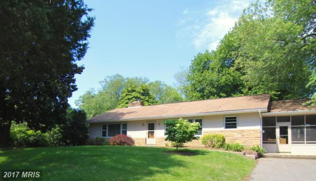 512 Hillsmere Drive, Annapolis, MD 21403 (#AA9959239) :: Pearson Smith Realty