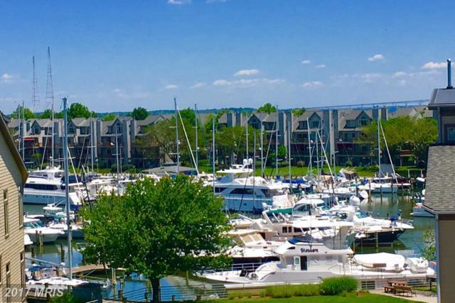 7025 Chesapeake Harbour Drive 18B, Annapolis, MD 21403 (#AA9959734) :: LoCoMusings