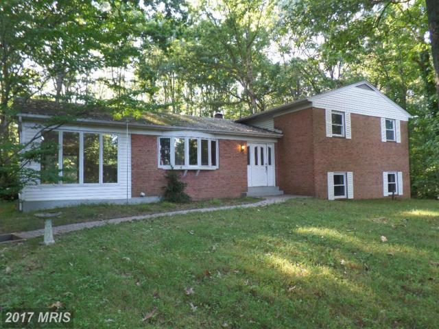 2586 Davidsonville Road, Gambrills, MD 21054 (#AA9961440) :: Pearson Smith Realty