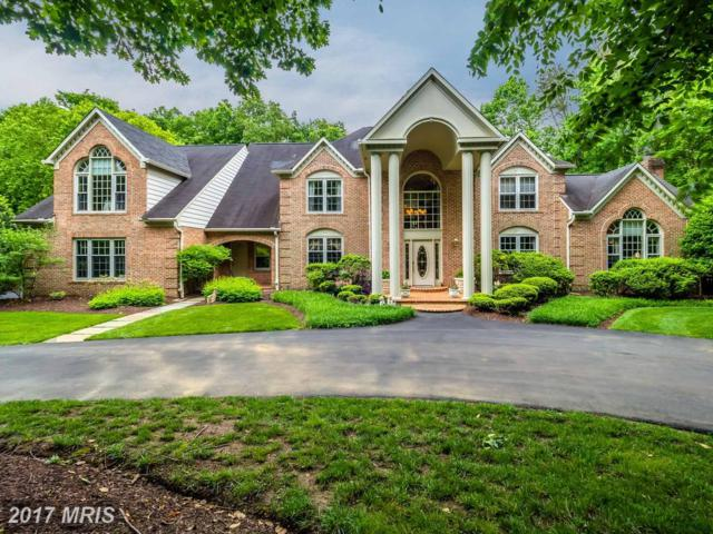 1005 Eagle Passages Court, Davidsonville, MD 21035 (#AA9966857) :: Pearson Smith Realty