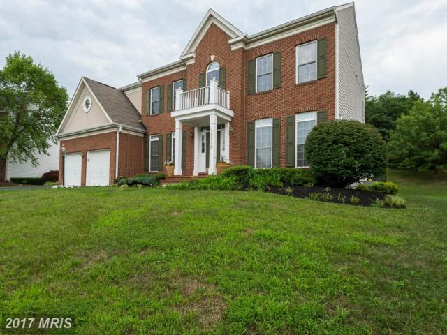 8209 Hortonia Point Drive, Millersville, MD 21108 (#AA9974526) :: Pearson Smith Realty