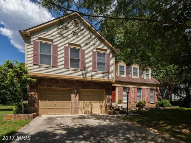 220 Autumn Chase Drive, Annapolis, MD 21401 (#AA9974731) :: LoCoMusings