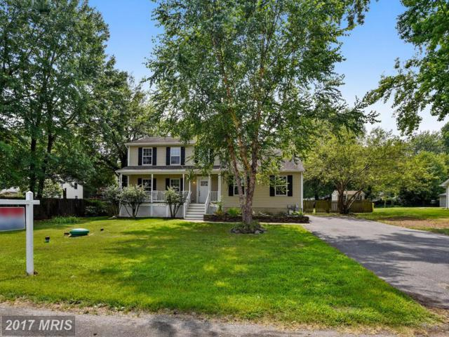 442 Magnolia Drive, Edgewater, MD 21037 (#AA9976841) :: Pearson Smith Realty