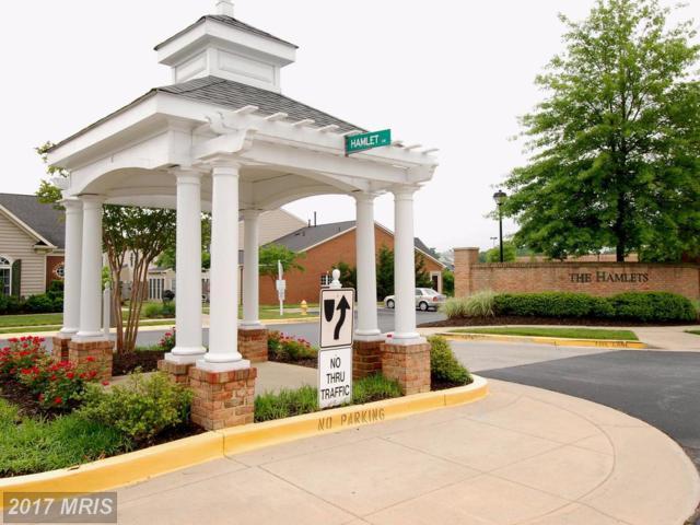 421 Hamlet Club Drive #307, Edgewater, MD 21037 (#AA9977764) :: Pearson Smith Realty