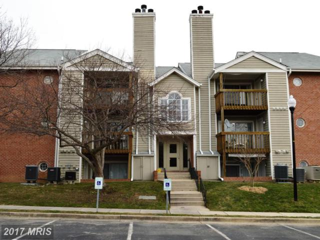 6701 White Water Court #204, Glen Burnie, MD 21060 (#AA9980102) :: Pearson Smith Realty