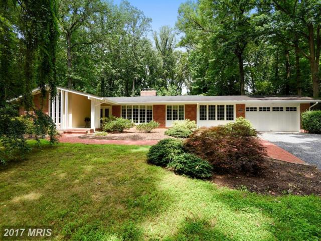879 Holly Drive S, Annapolis, MD 21409 (#AA9982375) :: Pearson Smith Realty