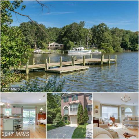 230 Wintergull Lane, Annapolis, MD 21409 (#AA9982468) :: Pearson Smith Realty