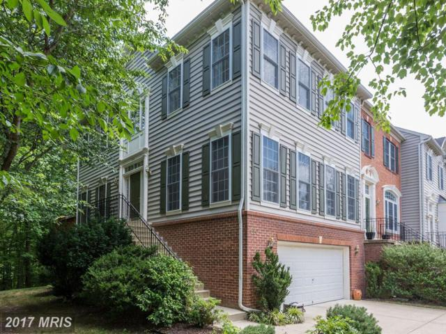 140 Riverton Place, Edgewater, MD 21037 (#AA9984019) :: Pearson Smith Realty