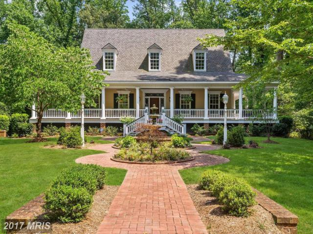 407 Beards Dock Crossing, Annapolis, MD 21403 (#AA9984330) :: Pearson Smith Realty