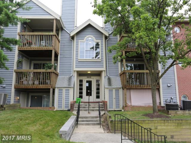 6609 Rapid Water Way #102, Glen Burnie, MD 21060 (#AA9986825) :: Pearson Smith Realty