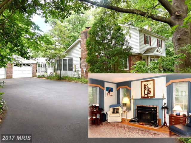 428 Halsey Road, Annapolis, MD 21401 (#AA9987293) :: Pearson Smith Realty