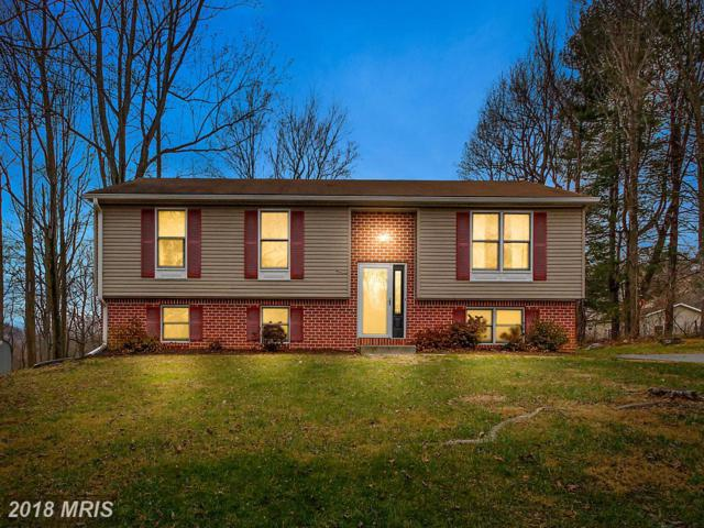 68 Cheryl Trail, Fairfield, PA 17320 (#AD10123174) :: Pearson Smith Realty