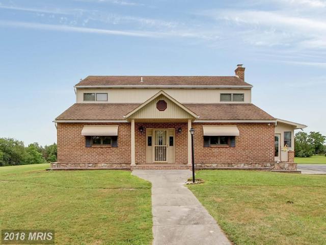1675 Hanover Road, Gettysburg, PA 17325 (#AD10206924) :: Eric Stewart Group