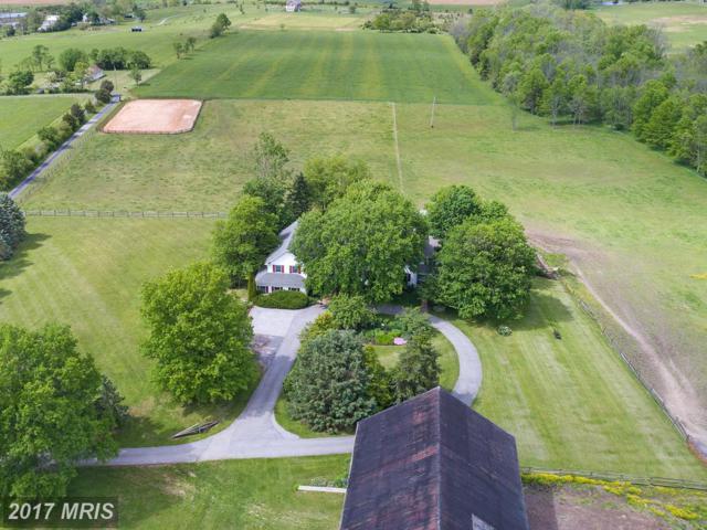305 Crooked Creek Road, Gettysburg, PA 17325 (#AD9978056) :: LoCoMusings