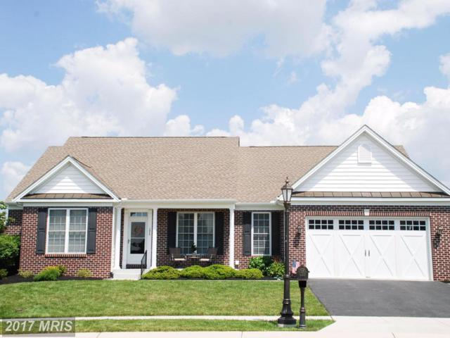125 Stafford Drive, Hanover, PA 17331 (#AD9980957) :: LoCoMusings