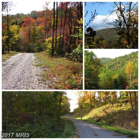252-LOT #1 Doe Ridge Lane, Amherst, VA 24521 (#AH9883609) :: LoCoMusings