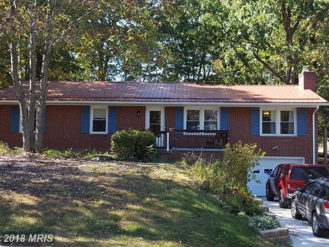 15507 Westwood Road SW, Cresaptown, MD 21502 (#AL10085655) :: The Bob & Ronna Group