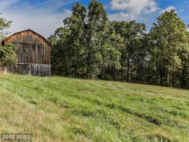 13328 Elbinsville Road NE, Flintstone, MD 21530 (#AL10123015) :: Pearson Smith Realty