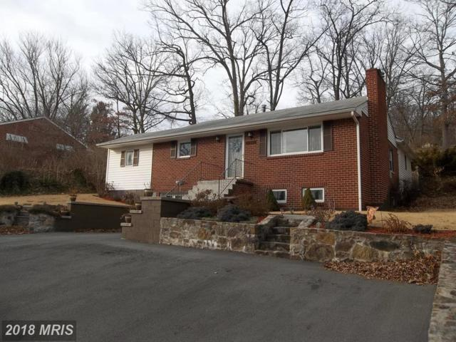 11804 Crocus Avenue, Cumberland, MD 21502 (#AL10147951) :: The Gus Anthony Team