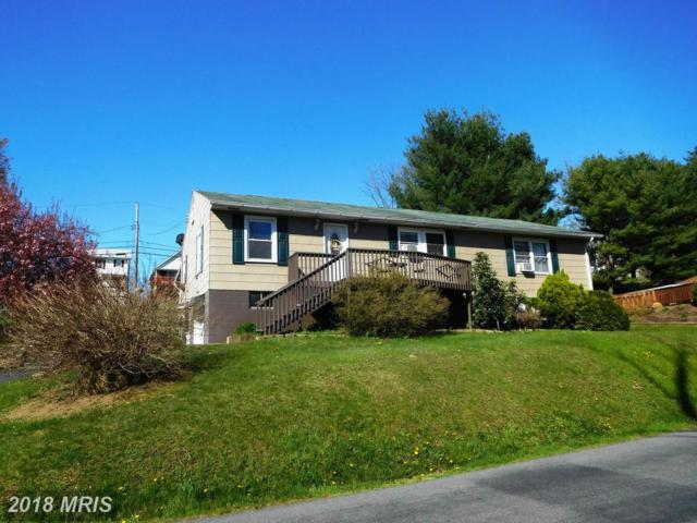 11905 Mulberry Avenue, Cumberland, MD 21502 (#AL10196840) :: The Gus Anthony Team