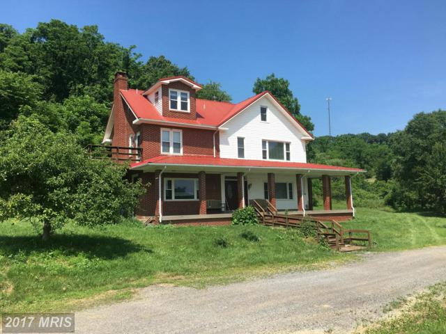 20500 Root Road NE, Flintstone, MD 21530 (#AL9676697) :: Pearson Smith Realty